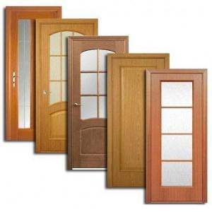 Двери, дверные блоки Нытвы